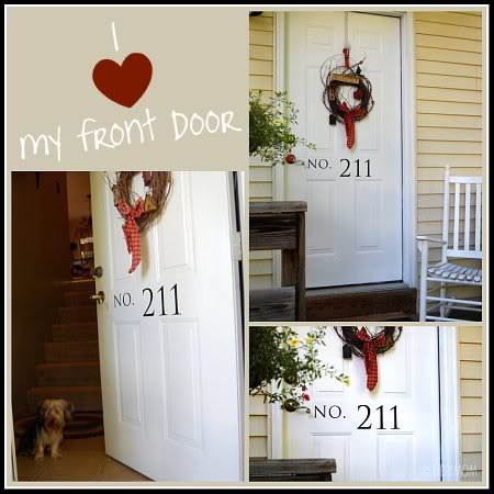 how to clean a front door at TidyMom.net
