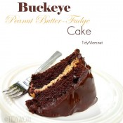 Buckeye Peanut Butter Fudge Cake recipe at TidyMom.net