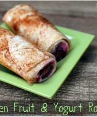 Frozen Fruit and Yogurt rollups
