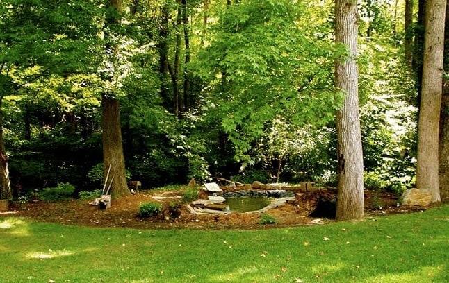 Turn a garden trouble spot into a koi pond oasis