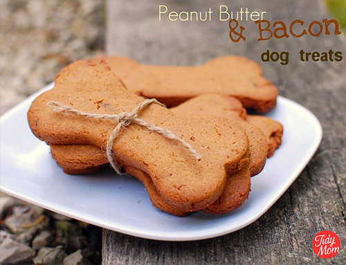 Homemade Dog Treat Cake Recipe
