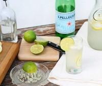 homemade lemon lime soda