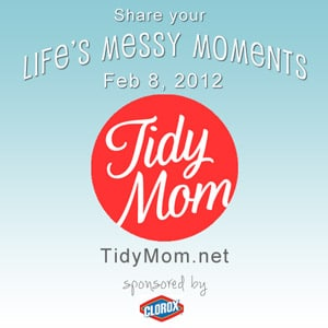 Life's messy momments with TidyMom
