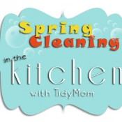 Spring Cleaning in the Kitchen with TidyMom