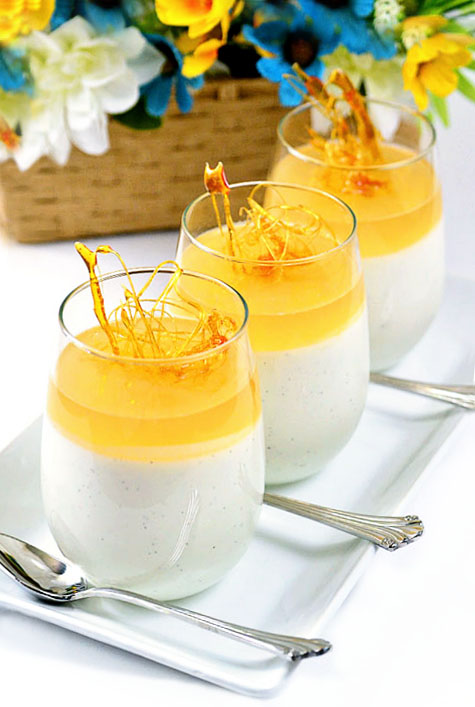 honey panna cotta dessert