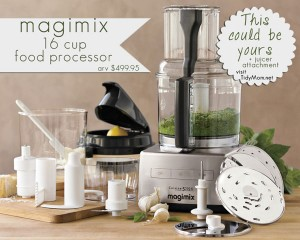 Magimix 16 cup Food Processor Giveaway at TidyMom