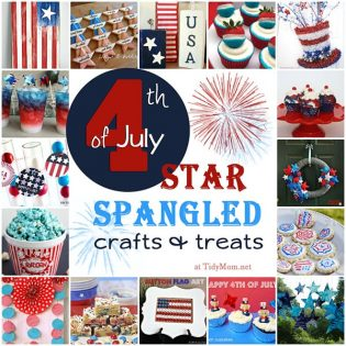 Star Spangled 4th of July Ideas at TidyMom.net