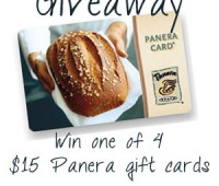 Win a Panera Gift Card at TidyMom.net