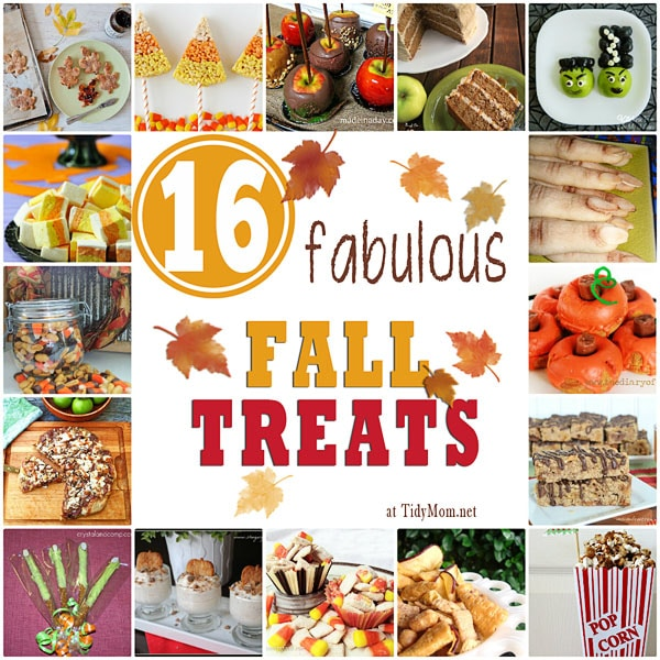 16 Fabulous Fall Treats at Tidy Mom.net