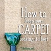 How to keep Carpet Looking it's Best