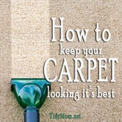 How to keep Carpet Looking it&#039;s Best