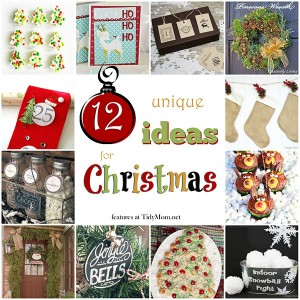 12 Unique Ideas for Christmas at TidyMom.net