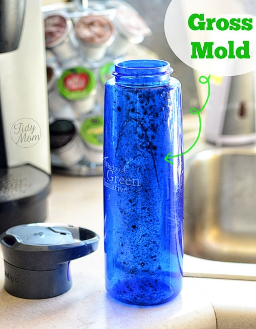 Mold in bottle