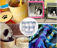 12 DIY Essentials For the Pampered Pooch at TidyMom.net