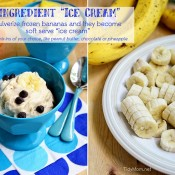 1 Ingredient Ice Cream TidyMom