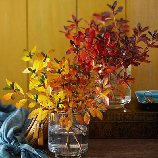 Bring the out doors in this fall. Decorate with fall leaves.