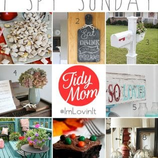I Spy Sunday - features from I'm Lovin' It Linky Party at TidyMom.net