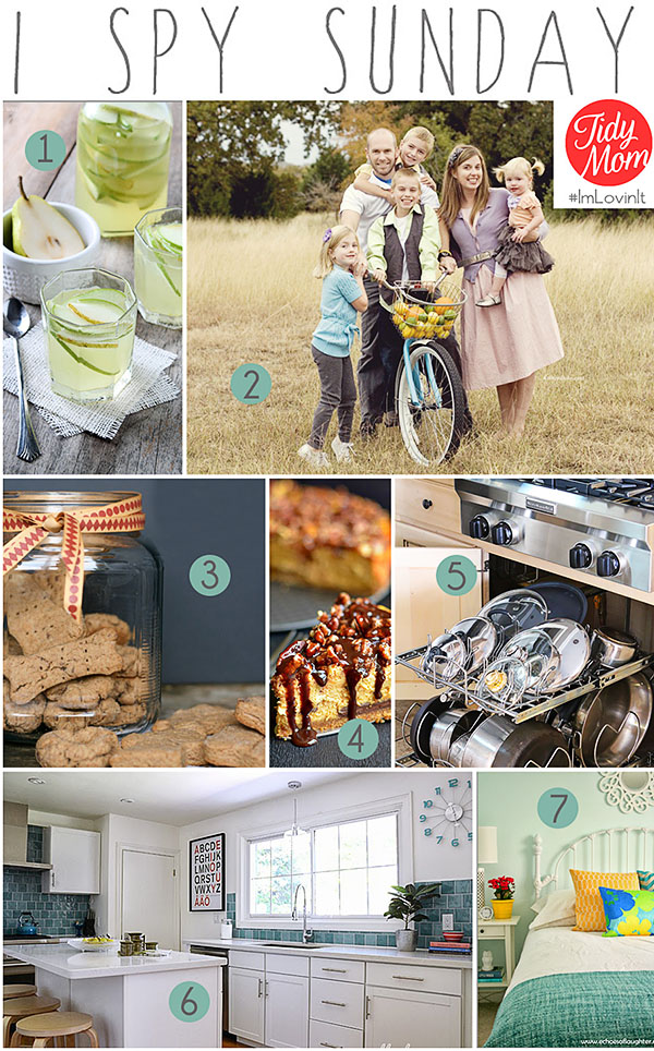 I Spy Sunday Features at TidyMom.net | Makeovers, Photography Tips, Recipes and More!!