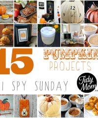 15 Pumpkin Projects YOU can make at TidyMom.net