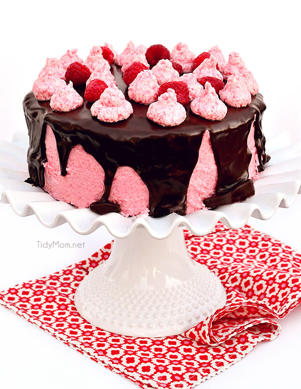Dark Chocolate Cake with Toasted Marshmallow Filling and Raspberry Buttercream covered Chocolate Gancache recipe at TidyMom.net