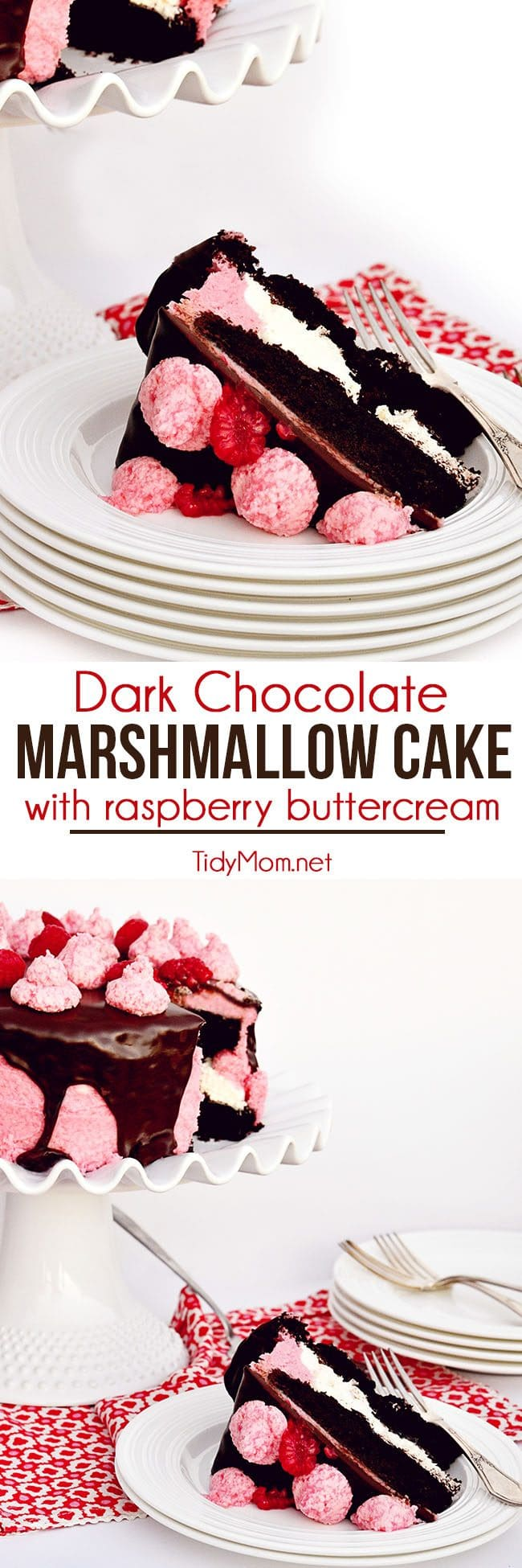 Dark chocolate, toasted marshmallow and raspberries is a delicious combination for a baby shower, birthday party, and perfect for Valentine's Day. Dark Chocolate Covered Marshmallow Cake with Raspberry Buttercream recipe at TidyMom.net