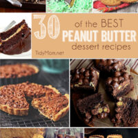 30 of the BEST Peanut Butter Dessert Recipes at TidyMom.net