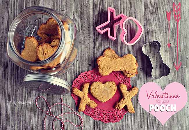 Valentine Treats for Dogs recipe at TidyMom.net