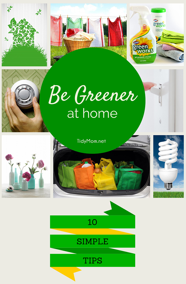 10 Simple Eco-Friendly Tips to Green Your Home.  More info at TidyMom.net