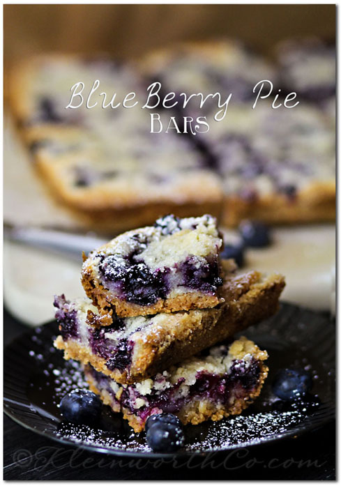 Blueberry Cobbler Bars | Spark Your Summer