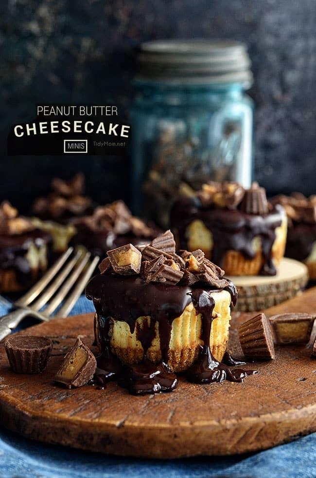 Mini Peanut Butter Cheesecakes recipe at TidyMom.net