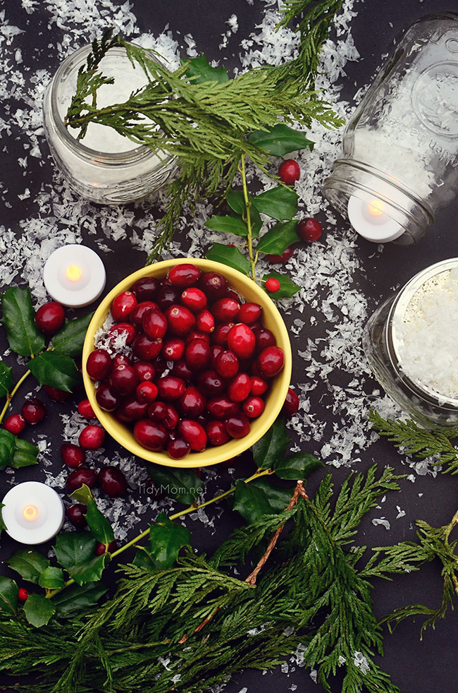 Cranberry centerpiece tidymom