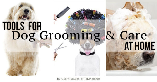 Tools for Dog Grooming & Care at Home