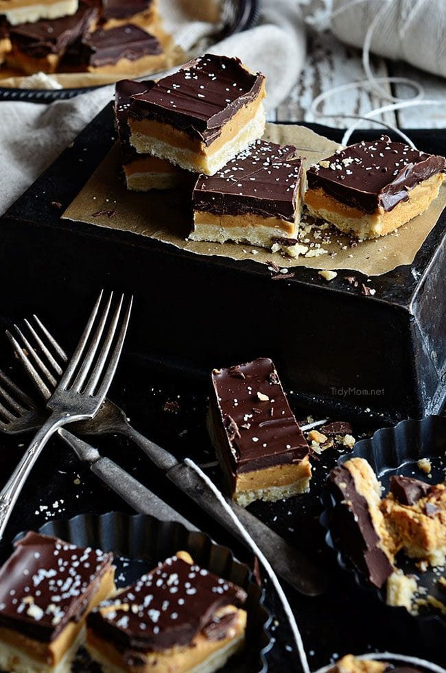 copycat tagaongs Peanut Butter Patty cookie bars image