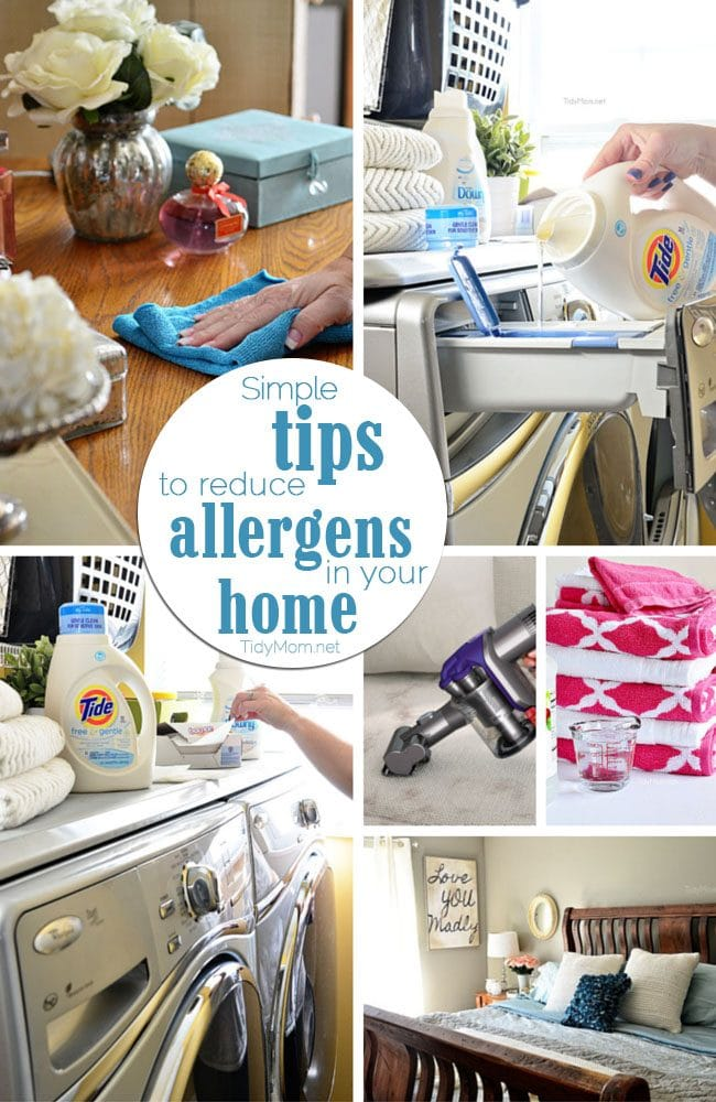 Limit the effect allergens have on your family by utilizing these 6 simple tips to reduce allergens in your home without breaking the bank. at TidyMom.net