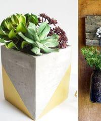 Creative Plant Ideas. Unique planters, diy planters, centerpieces and more!! details at TidyMom.net