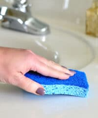Scotch-Brite® Non-Scratch Scrub Sponge