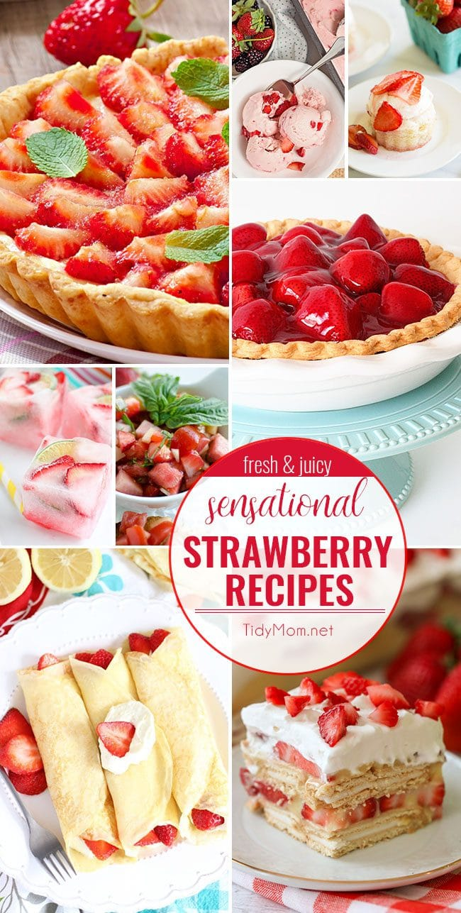 Celebrate the sweet taste of summer with these fresh and juicy SENSATIONAL STRAWBERRY RECIPES. From strawberry shortcake and strawberry pie to strawberry bruschetta and more! find all the strawberry recipes at TidyMom.net