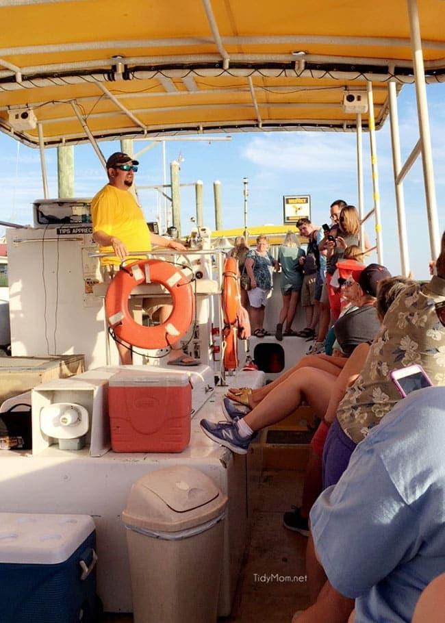 Tybee Island, Georgia | Captain Mike's Sunset Dauphin Cruise
