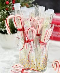 Homemade Peppermint Milk Bath is so easy to make and great for gifting! Get the details at TidyMom.net