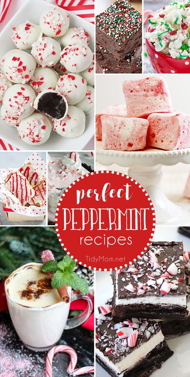 Delicious Perfect Peppermint Recipes. From peppermin fudge and peppermint marshmallows, to spiked peppermint hot chocolate and peppermint oreo truffles and more! details at TidyMom.net