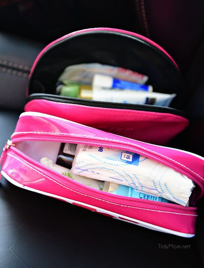 Clever ideas and tips for car organization at TidyMom.net