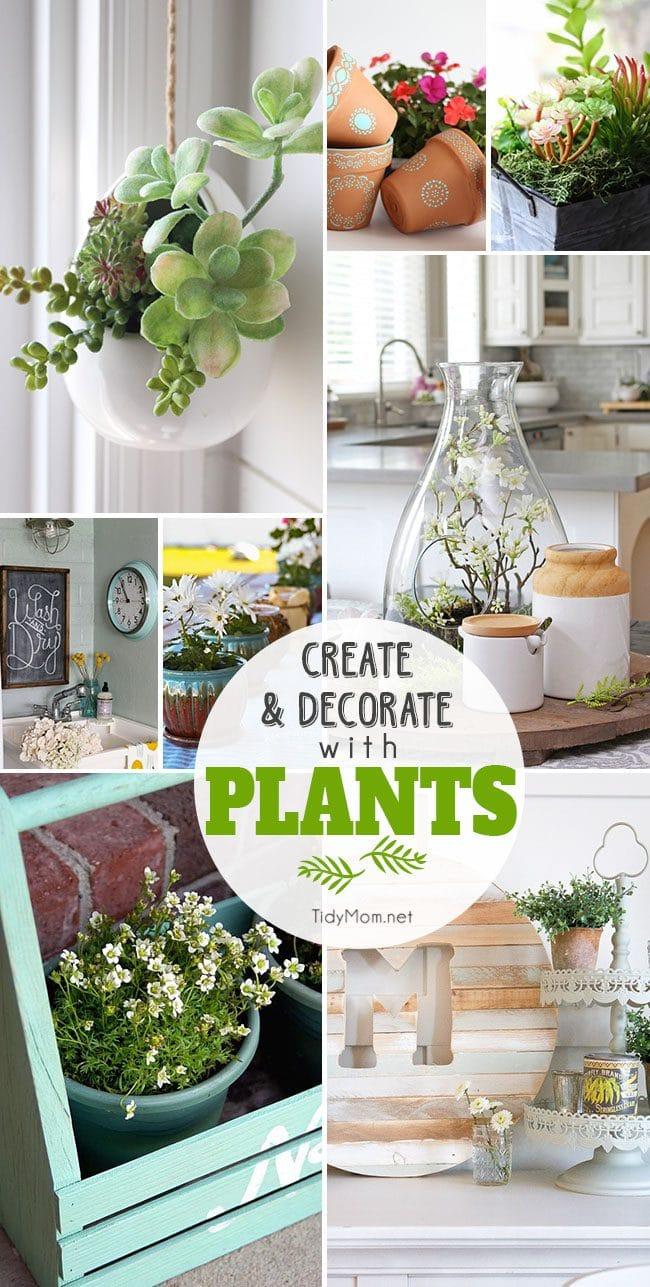 """Whether you decorate your home with real or faux, there's no arguing that plants add """"life"""" to your decor. Click to find 16+ Ideas to Create and Decorate with Plants at TidyMom.net"""
