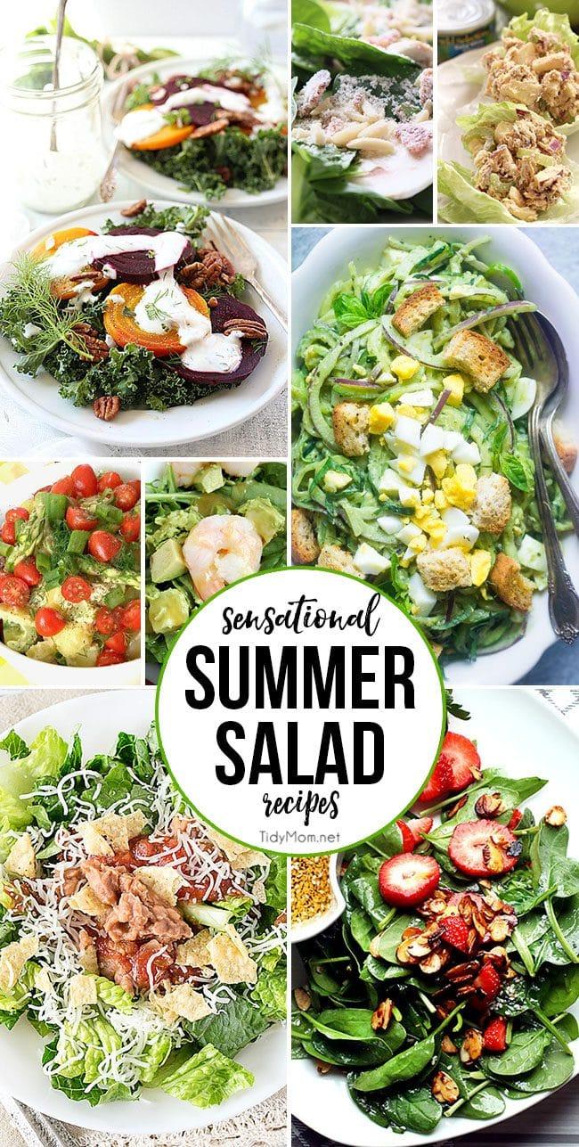 Sensational Summer Salad Recipes at TidyMom.net