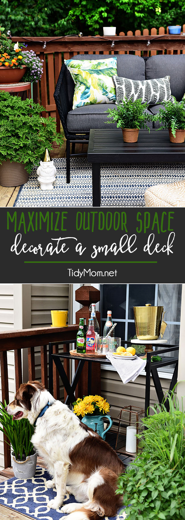Maximize Outdoor Space! Learn How to Decorate a Small Deck or Patio. Find tips on getting the most out of your small deck or patio along with plants that keep mosquitos and other pests away. Get all the details at TidyMom.net