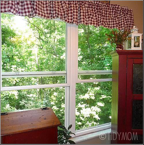 Tips For Cleaning Windows: Window Cleaning Tip