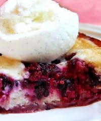 Easy Homemade Blackberry Cobbler with Ice Cream recipe at TidyMom.net