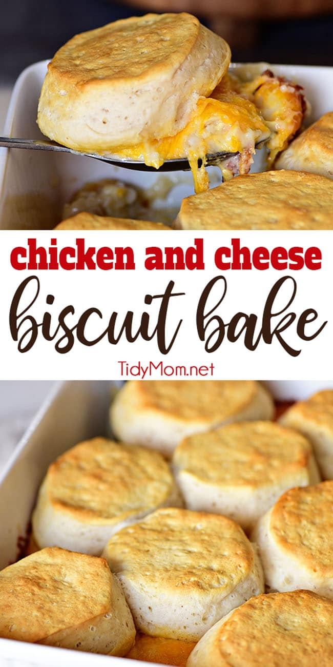 Tender chicken breasts in a cheesy white sauce are topped with homestyle biscuits this Chicken and Cheese Biscuit Bake. It's a simple one-dish meal the whole family will love!  Get the easy recipe at TidyMom.net #chicken #chickendinner #comfortfood #cheese #casserole