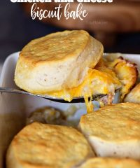 Tender chicken breasts in a cheesy white sauce are topped with homestyle biscuits this Chicken and Cheese Biscuit Bake. It's simple one-dish meal the whole family will love! Get the easy recipe at TidyMom.net
