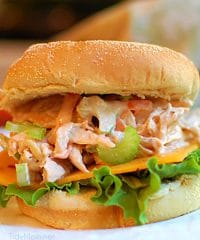 Pulled Chicken Salad on bun