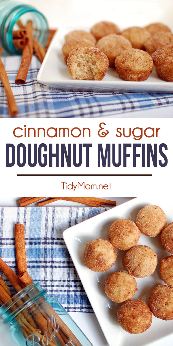 These Cinnamon and Sugar Doughnut Muffins are like a sweet hug from Grandma.  They have the flavor of a cake doughnut, with the ease of simply making muffins! Make mini muffins, and they're just like doughnut holes! Get the full printable recipe at TidyMom.net